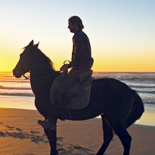 L'équitation en Corse - La Corse à cheval pour profiter de la nature !