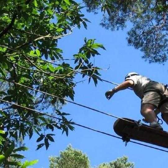 L'accrobranche en Corse, aventures dans les arbres